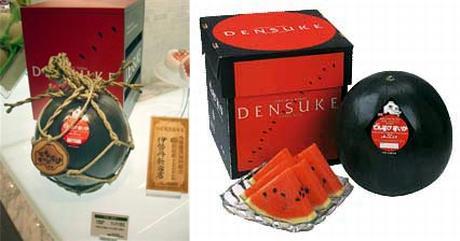Densuke_watermelon