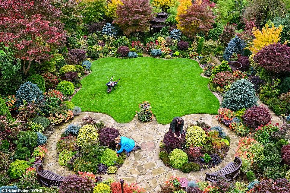 """E pabesueshme/ Dy pensionistë """"çmendin"""" dynjanë, krijojnë kopshtin magjik (FOTO)"""